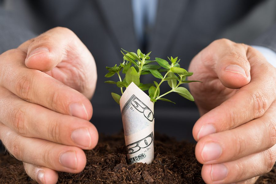 Raising Capital: Understanding the Options for Your Business